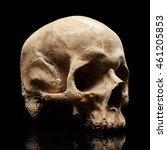 Small photo of Skull isolated on black background