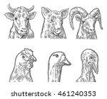 Farm Animals Icon Set. Heads...