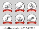 a set of labels with hand drawn ... | Shutterstock . vector #461640997