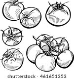 set of hand drawn tomato.... | Shutterstock .eps vector #461651353