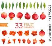 vintage pomegranates  flowers... | Shutterstock .eps vector #461793223