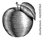 engraved isolated illustration... | Shutterstock . vector #462035563