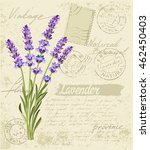 vector hand drawn lavender set... | Shutterstock .eps vector #462450403