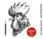 Hand Drawn Rooster Head Vector...