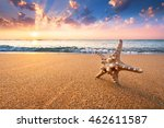 tropical beach background with... | Shutterstock . vector #462611587