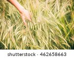 a slim womans hand running... | Shutterstock . vector #462658663