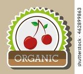 organic food fruit icon vector... | Shutterstock .eps vector #462899863