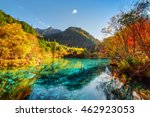 amazing view of the five flower ... | Shutterstock . vector #462923053
