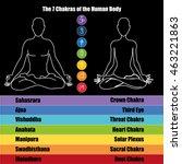 seven chakras of the human body | Shutterstock . vector #463221863