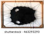the skin of polar cat  seal ... | Shutterstock . vector #463293293