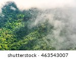 low clouds over the forest... | Shutterstock . vector #463543007