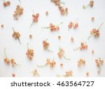 Small photo of berries on the white background