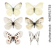 collection of white butterfly... | Shutterstock . vector #463951733