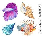 Watercolor Colorful Set Fish...