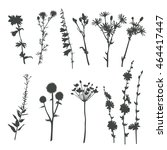 herbs silhouettes isolated on... | Shutterstock .eps vector #464417447