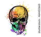 skull sketch with watercolor... | Shutterstock .eps vector #464432663