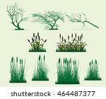 Swamp Trees Vector Pack