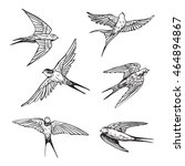 swallow line set | Shutterstock .eps vector #464894867