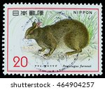 "Small photo of BANGKOK, THAILAND - AUGUST 05, 2016: A postage stamp printed in Japan shows Amami rabbit, series ""Nature Conservation"" 1st issue Mammals, circa 1974."