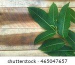 leaf on wood | Shutterstock . vector #465047657