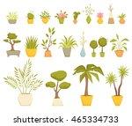 indoor plants in pot set.... | Shutterstock .eps vector #465334733