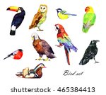 Watercolor Bird Set  Eagle ...