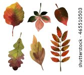 watercolor autumn leaves  | Shutterstock . vector #465510503