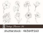 vector set of 8 vintage drawing ... | Shutterstock .eps vector #465649163