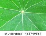 artistic style   defocused... | Shutterstock . vector #465749567