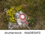 red and white trail marker on...   Shutterstock . vector #466085693