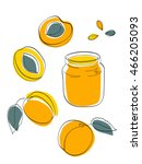 vector illustration apricot jam ... | Shutterstock .eps vector #466205093