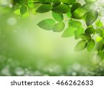 abstract spring background with ...   Shutterstock . vector #466262633