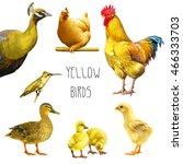 set of yellow birds ... | Shutterstock . vector #466333703