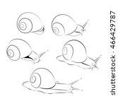 black and white snail. vector... | Shutterstock .eps vector #466429787