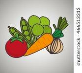 tomato  peas  broccoli  carrot  ... | Shutterstock .eps vector #466513313