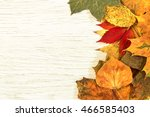 autumn leaves background.  ... | Shutterstock . vector #466585403