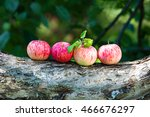 several ripe apples lying on a... | Shutterstock . vector #466676297