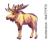 isolated watercolor elk on... | Shutterstock . vector #466777973