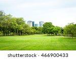 beautiful park scene in public... | Shutterstock . vector #466900433
