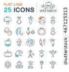 set vector line icons in flat... | Shutterstock .eps vector #467125313