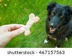 dog eats cookies. | Shutterstock . vector #467157563