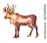 isolated watercolor reindeer on ... | Shutterstock . vector #467260043