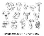 forest mushrooms sketch of... | Shutterstock .eps vector #467343557