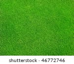 green grass | Shutterstock . vector #46772746