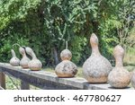 Gourds Drying On A Wooden Fenc...