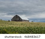 Barn In Corn Feild