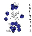 image of bilberry. set of... | Shutterstock .eps vector #469051223