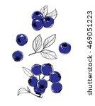 image of bilberry. set of... | Shutterstock .eps vector #469051223