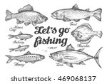 fishing. hand drawn vector fish.... | Shutterstock .eps vector #469068137