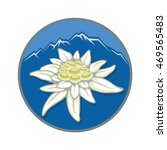 blooming edelweiss flower....   Shutterstock .eps vector #469565483